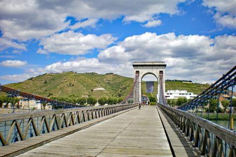 Bridge and vineyards