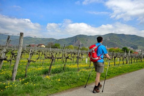 Wanderer am Welterbesteig Wachau