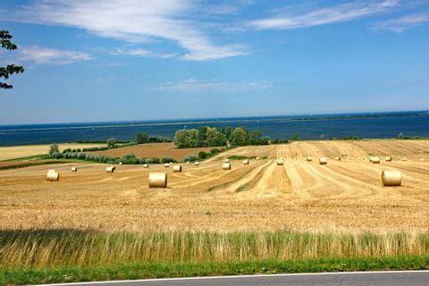 Landschaft am Ostseeküsten-Radweg