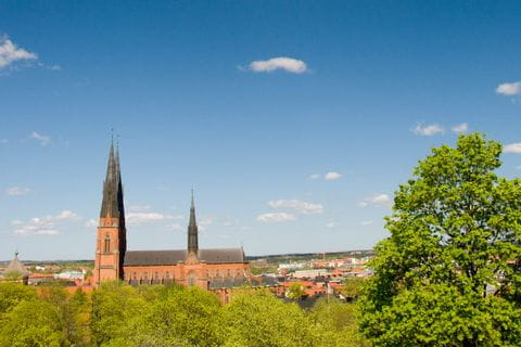 Kathedrale in Uppsala