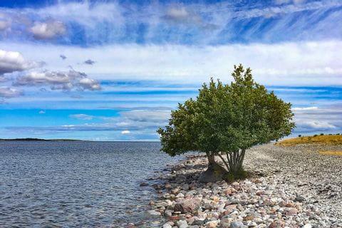 Strand auf Gotland