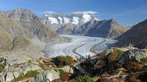 The end of the Aletsch Glacier