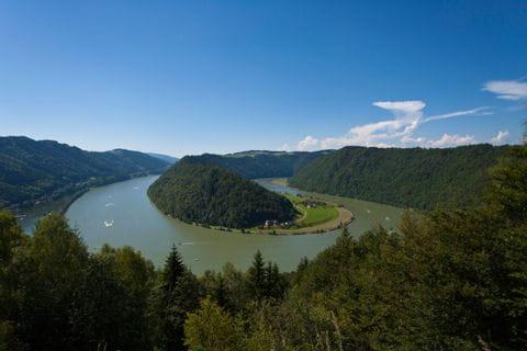 Blick auf Wald und die Donauschlinge