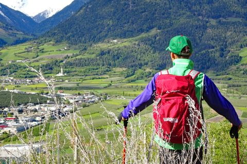 Trekking with views to mount Ortler in Vinschgau area