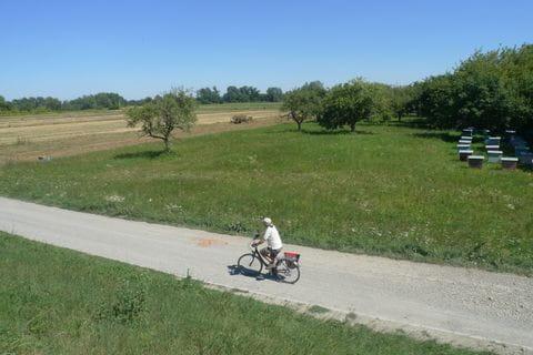 Radfahrer auf Radweg entlang der Weichsel