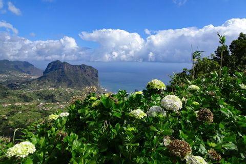 Blick über die Küste von Madeira