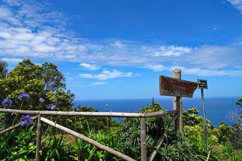 Wanderwege durch die blühende Vegetation Madeiras