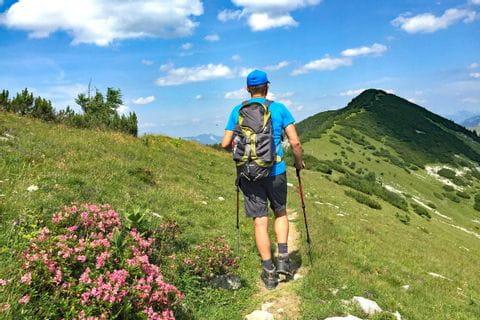 Wandern in der Osterhorngruppe mit Blick auf blühende Almlandschaften