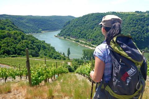 Wanderer mit Blick auf Weinberge und dem Rhein