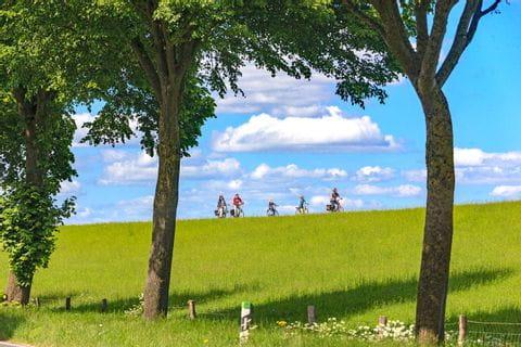 Landschaft mit Radfahrer