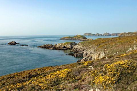 Panoramawandern in Pembrokeshire Wales