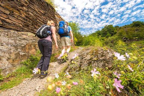 Romantischer Wanderpfad am Mosel- und Eifelsteig