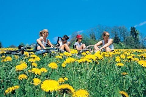 Radler sitzen in Blumenwiese