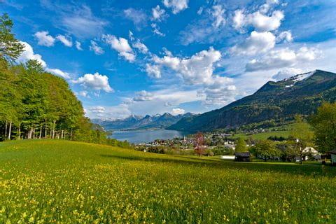 Wandern in traumhafter Kulisse über dem Wolfgangsee