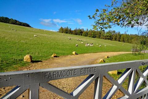 Schafe bei den Wanderwegen in Cotswolds