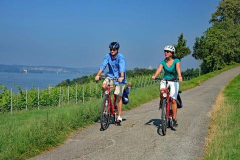 Radfahrer auf Radweg bei Hagenau am Bodensee