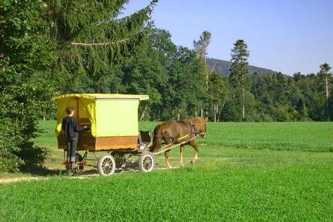 Fahrt mit dem Planwagen