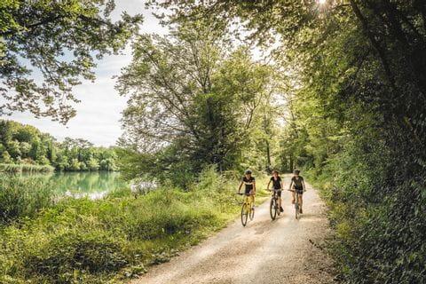 Schweiz. ganz natuerlich.Bikergruppe unterwegs auf der Veloland Route entlang der Aare bei Brugg.
