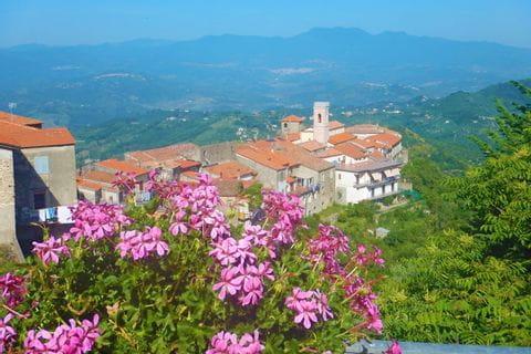 Bunte Blumen finden sich im Cilento an jeder Ecke