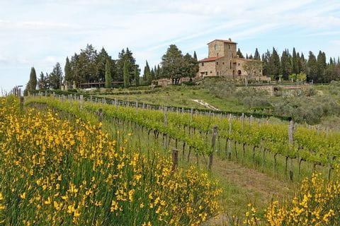 Toskanisches Weingut in Chianti