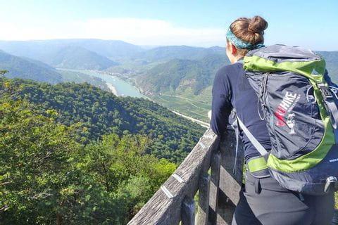 Panoramablick auf die Donau vom Seekopf