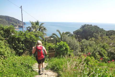 Wandern durch meditterane Vegetation