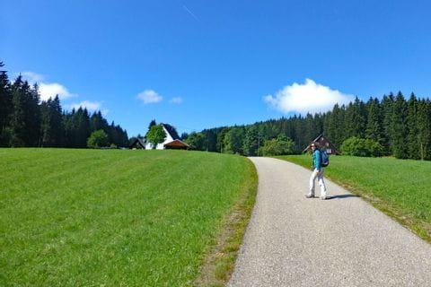 Wanderweg zum Schwarzwald
