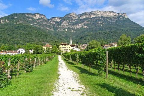 Wandern auf der Südtiroler Weinstraße Richtung Kaltern