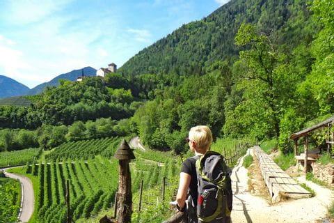 Wandergenuss durch die blühenden Obstgärten Südtirols