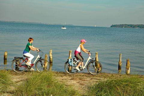 Radeln entlang des Meeres in Nordfriesland