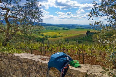 Kurze Rast an einer Steinmauer mit Blick auf die Weinfelder