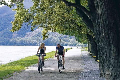 Radfahrer auf Radweg neben der Donau