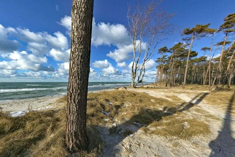 Traumhafter Strand an der Ostsee