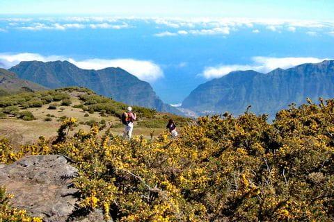 Höhenwanderung in der Gruppe auf Madeira