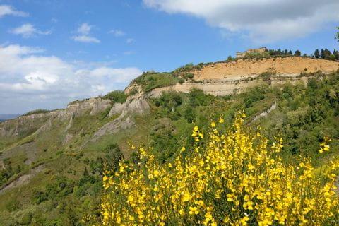 Toskanische Blumenpracht trifft auf Sandstein in Volterra