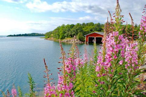 Impressionen von Radreise in Finnland