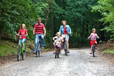 Familie radelt durch den Wald in Holland