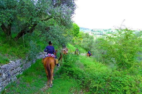 Ausritt durch die grüne Landschaft in der Toskana