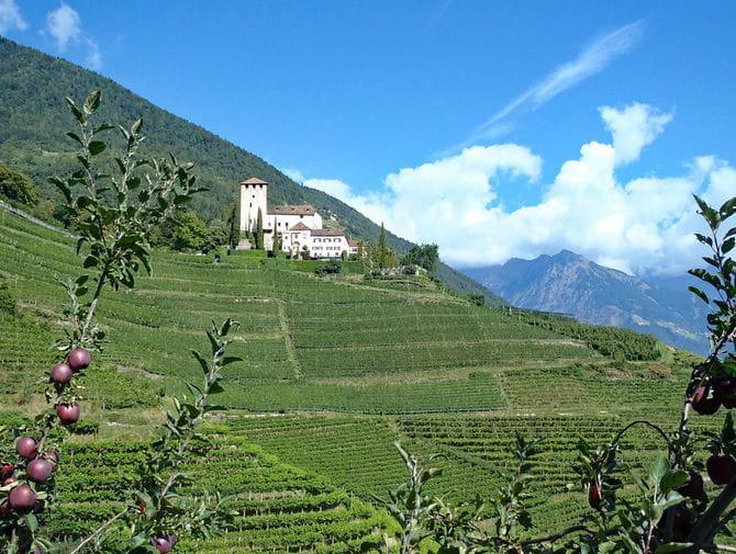 Alte Burgen und grüne Weinberge auf der Südlichen Weinstraße