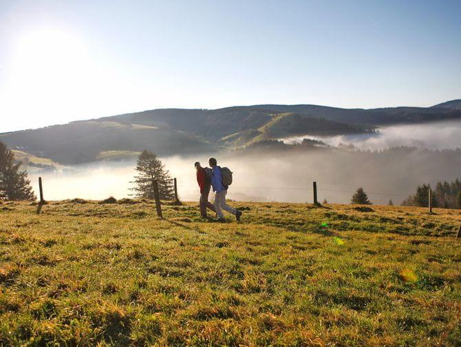 Wanderpaar im nebligen Schwarzwald